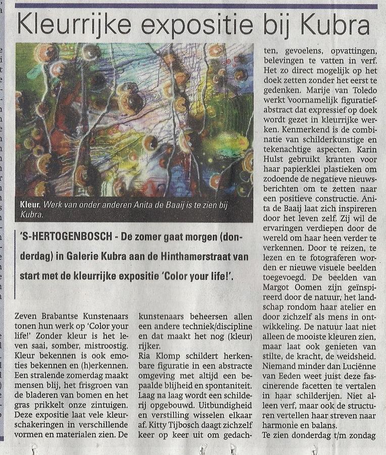 Publicatie Weekblad Regio 's-Hertogenbosch 26 juni 2013